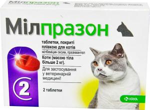 Антигельминтики для собак