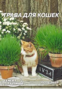 Трава для котів